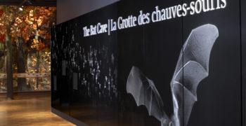 La Cueva de los Murciélagos en el ROM