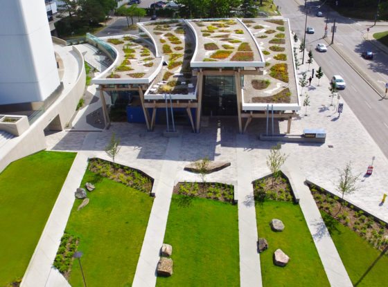 Reinventing the Roof: Five Ways to Enhance Green Roofs