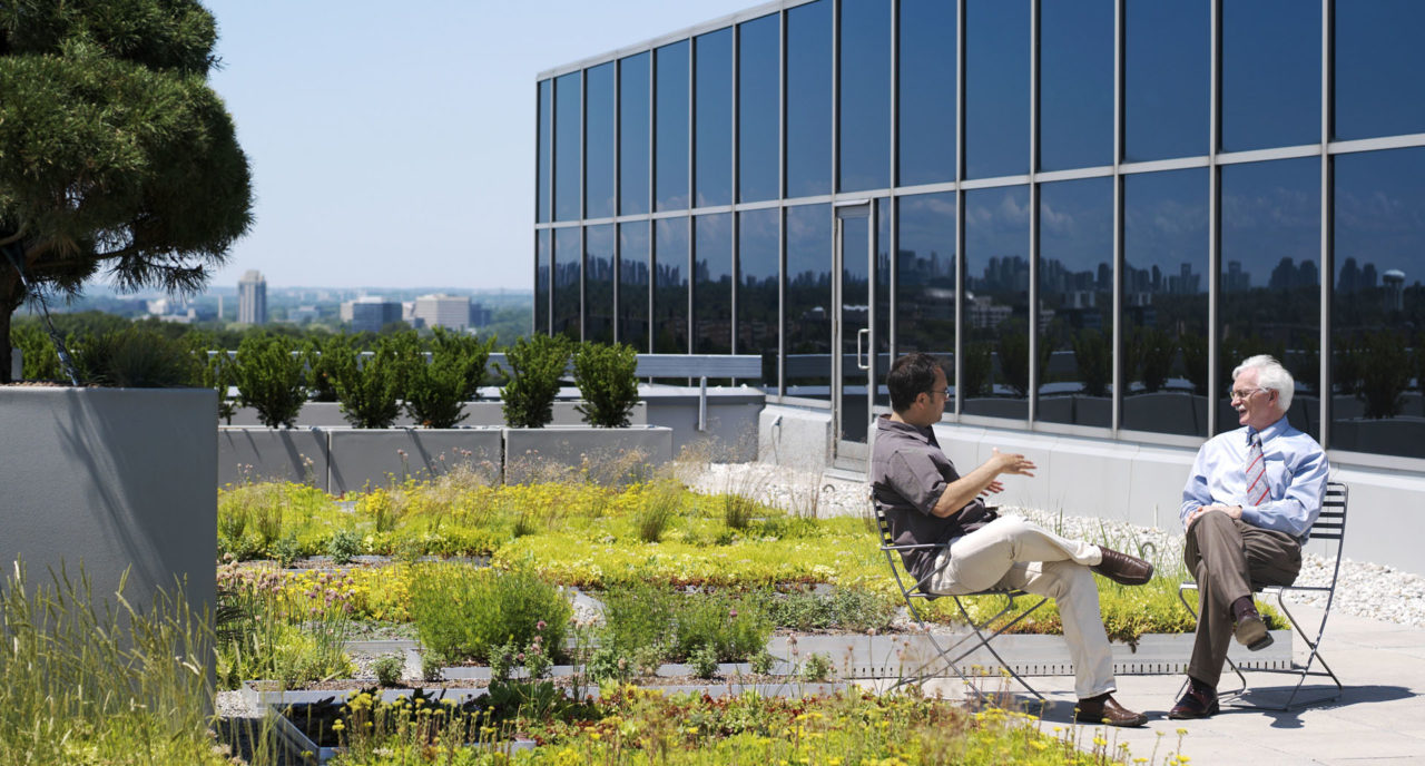 Photo of ESRI Canada's Garden in the Sky